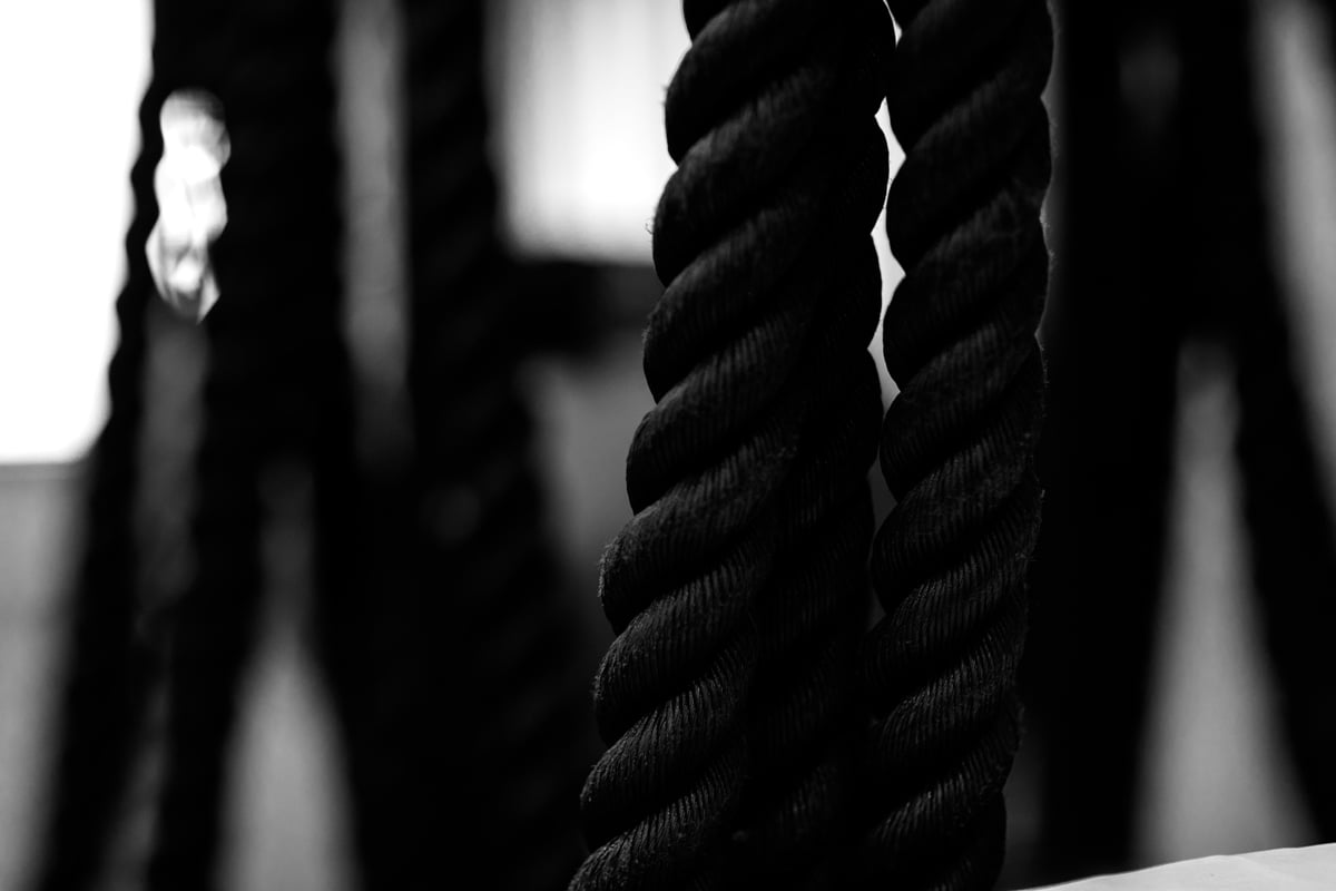 The Four Seasons Of Lifting – Part 3