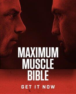 Maximum muscle bible